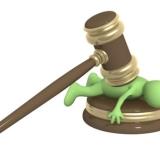 Юридическое сопровождение бизнеса за 39 000 рублей в месяц